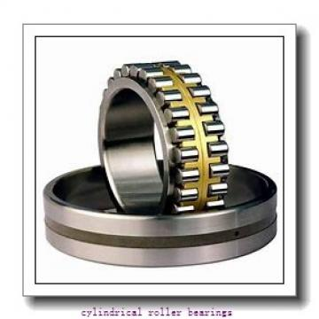 1.25 Inch | 31.75 Millimeter x 2 Inch | 50.8 Millimeter x 2 Inch | 50.8 Millimeter  CONSOLIDATED BEARING 96732  Cylindrical Roller Bearings