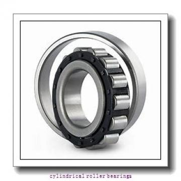 1 Inch | 25.4 Millimeter x 2.25 Inch | 57.15 Millimeter x 0.625 Inch | 15.875 Millimeter  RHP BEARING LLRJ1M  Cylindrical Roller Bearings