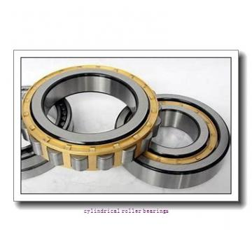 1.125 Inch | 28.575 Millimeter x 1.75 Inch | 44.45 Millimeter x 3 Inch | 76.2 Millimeter  CONSOLIDATED BEARING 95648  Cylindrical Roller Bearings